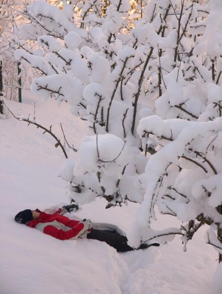 zima-w-naszym-ogrodzie-2009